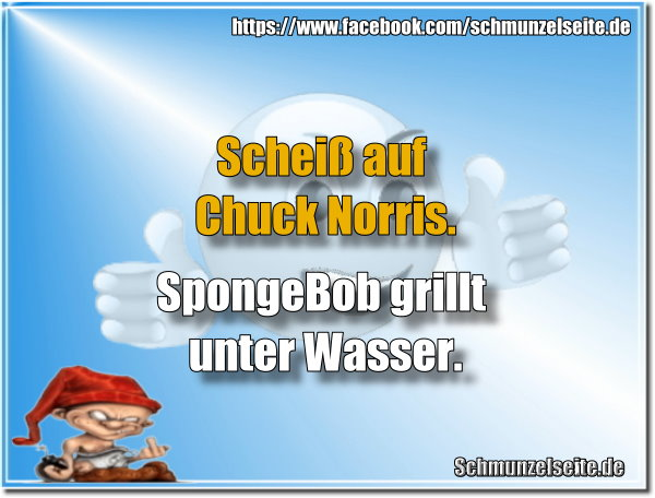 SpongeBob vs Chuck Norris