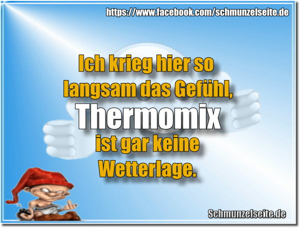 Toller Thermomix