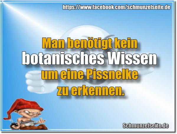 Botanisches Wissen