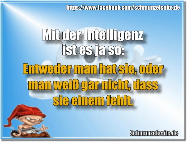 Intelligenz hat man