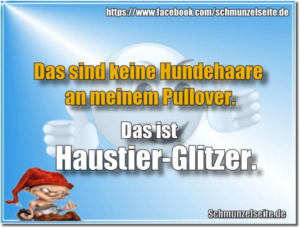 Haustier-Glitzer