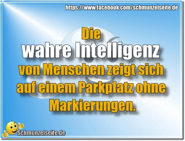 Wahre Intelligenz